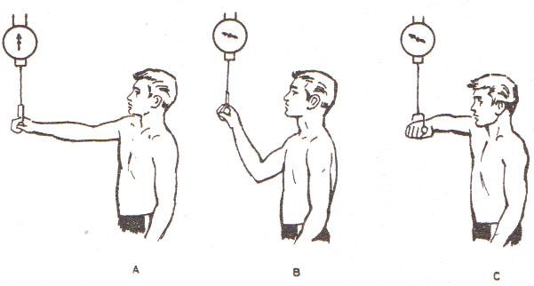 Tipos de traccion de codo